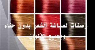 صورة صبغ الشعر طبيعيا بدون حناء , صبغ الشعر بمواد طبيعية