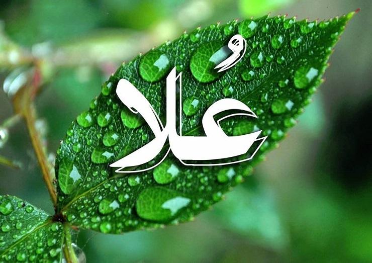 صور اسم علا بالصور , صور باسم علا