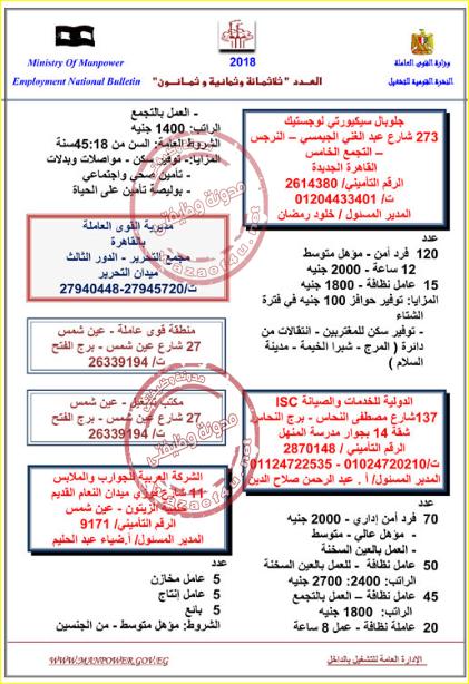 صورة وظائف وزارة القوى العاملة 2019 , وظائف لكل الشباب