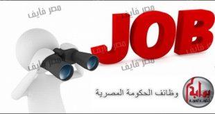 صور وظائف خالية في محافظة قنا , وظائف خاليه للشباب