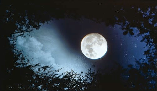 صورة صور للقمر , خلفيات للقمر بالليل