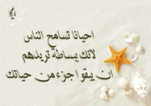 صورة صور كلام جميل , مقولات علي صور 484 3