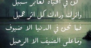 كلام جميل عن الذكريات , عبارات عن الذكريات
