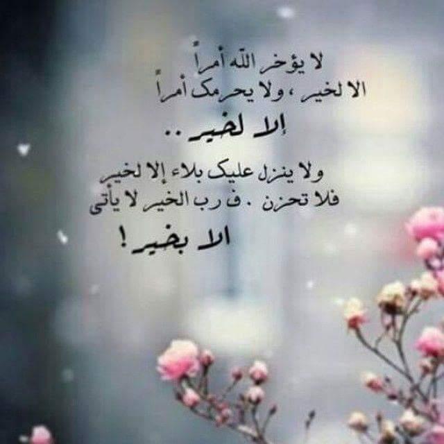 صورة صور فيها كلمات حلوه , خلفيات مكتوب عليها 3152