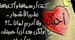 صور على الحب , عبارات وكلمات جميلة عن الحب