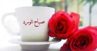 صورة صباح ال , اجمل العبارات والكلام فى الصباح