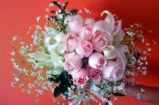صور اجمل ورود الحب , احلى وارق صور زهور رومانسيه
