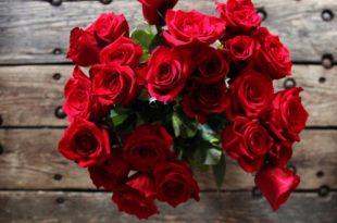 صور ورود الحب , اجمل الوردات الرومانسيه للاهداء