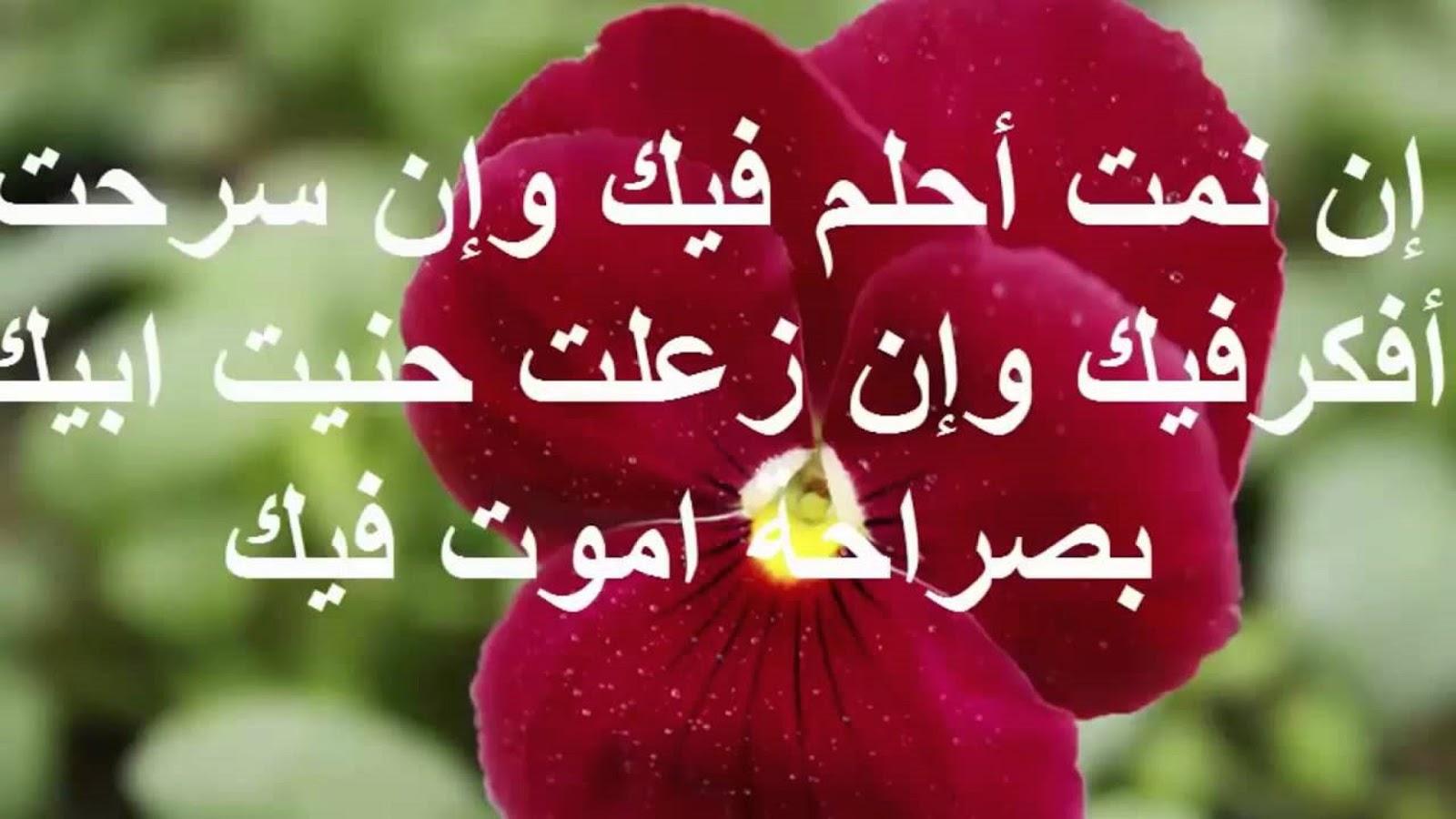 صورة رسائل حب خاصة للحبيب , ماسج عشق وغرام فى الحبيب 8259 1
