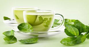 صورة هل الشاي الاخضر يخفف الوزن , الشاي الاخضر وفقدان الوزن