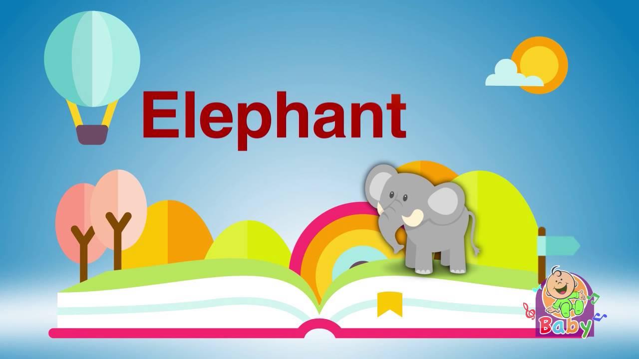 صورة اسم الفيل بالانجليزي , ما معنى اسم الفيل بالانجليزي