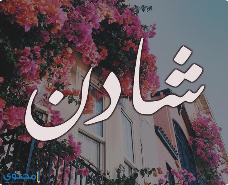 صورة اسم ولد بحرف ش , اروع اسم ولد بحرف ش