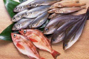 صورة تفسير حلم اكل السمك للحامل , رؤية اكل السمك للحامل