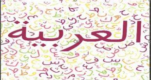 صورة معلومات عن اللغة العربية , حقائق لاتعرفونها عن لغتنا العربيه