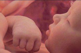 صورة هل الجنين ينام في بطن امه , كيف يغفو الجنين فى رحم الام