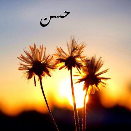 صورة اسم حسن بالصور , اجمل الصور المختلفه لاسم حسن