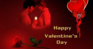 صور لعيد الحب , احتفالات عيد الحب