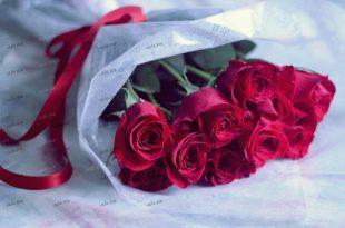 صور صور ورود مكتوب عليها , الورد لما يهل بكلامه