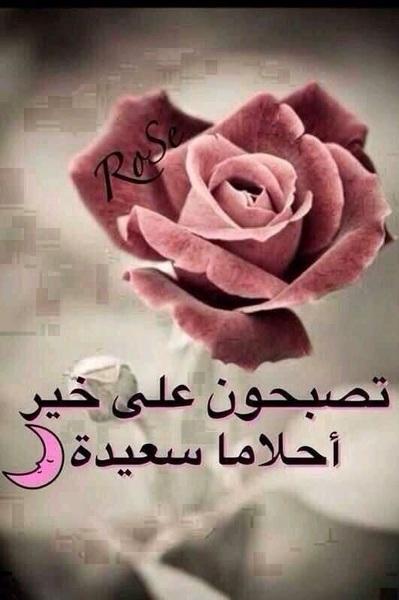 صورة صور بوكيه ورد , اجمل صور بوكيات الورد