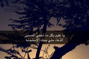 صورة صور مع كلام جميل , كلمه مميزه جدا للحب