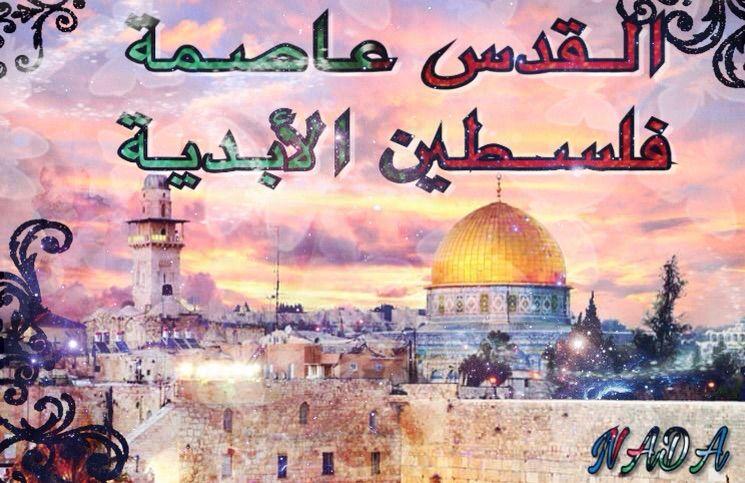 صورة شعر عن فلسطين 6460 5